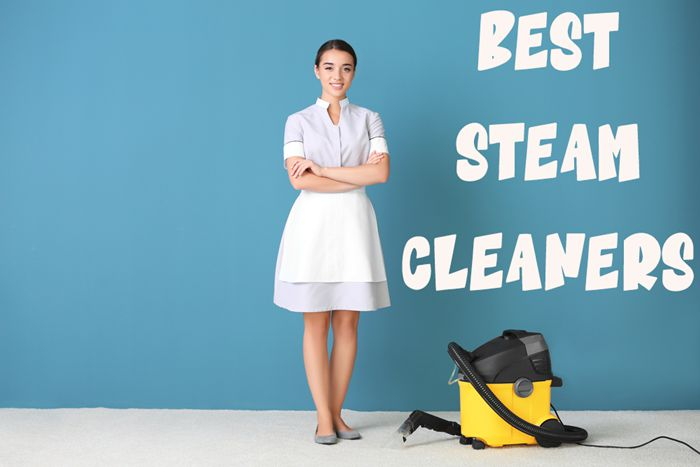 Top 10 Best Steam Cleaners for Carpets, Floors, and Fabric
