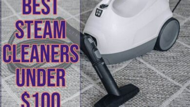 Best Steam Cleaner Under $100 [Performance + Affordability]