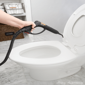 Steam Clean and Sanitize Toilet Bowl