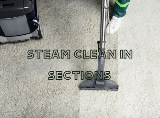 Clean Area Rug in Sections