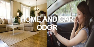 Get Rid of Home and Car Odor