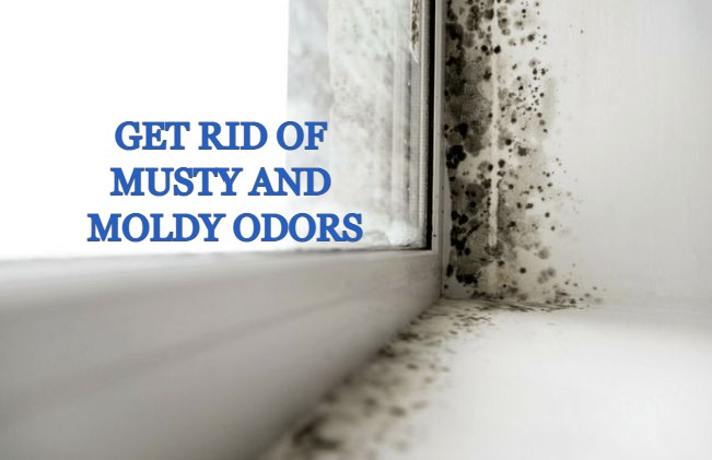 Musty and Moldy Smell in House