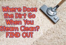 Where Does the Dirt Go When You Steam Clean